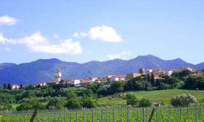 Banyuls dels aspres route des vins en albere guide du tourisme des pyrenees orientales