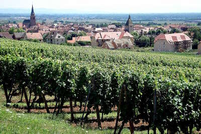 Bergheim vue depuis les coteaux de l altenberg route des vins d alsace guide du tourisme de l alsace
