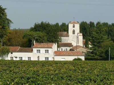 Bourg charente le cognac et le fleuve etape sur la route du vignoble de cognac