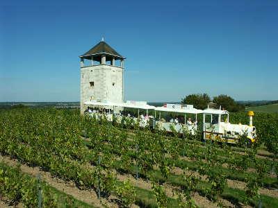Chalonnes sur loire route des vins d anjou loire sauvage et corniche angevine guide du tourisme de maine et loire