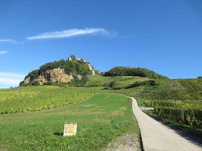 Chateau chalon dominant les coteaux du vignoble chateau chalon aoc route des vins du jura guide du tourisme du jura