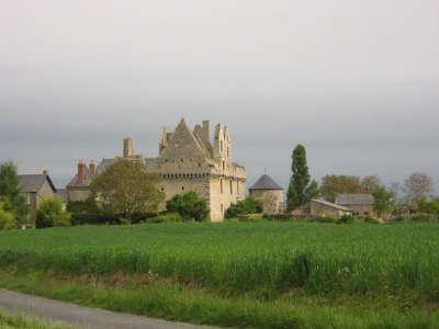 Chateau de riou a tigne route des vins d anjou patrimoine du haut layon guide du tourisme de maine et loire