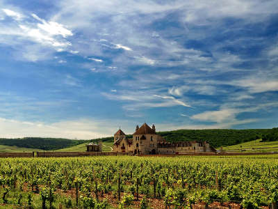 Chateau du clos de vougeot sur la route des grands crus de bourgogne guide touristique de cote d or