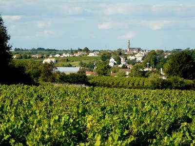 Chateau thebaud la route des vins entre ocean et champtoceaux pays nantais guide du tourisme de loire atlantique