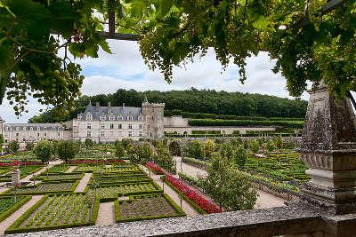 Chateau villandry et ses jardins route des chateaux de la loire le guide du tourisme centre val de loire
