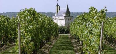 Chinon vignoble chateau route des vins de tourraine rive gauche entre saumur et chenonceaux