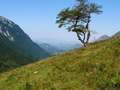 Col de marie blanque route des cols des pyrenees guide du tourisme des pyrenees atlantiques aquitaine