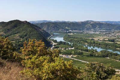 Crozes hermitage les vignobles septentrionaux route des vins des cotes du rhone