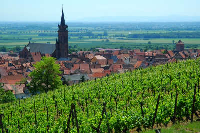 Dambach la ville route des vins d alsace guide du tourisme de l alsace