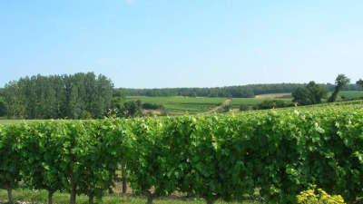 Domaine de villeneuve tremont route des vins d anjou patrimoine du haut layon guide du tourisme de maine et loire