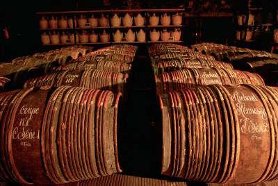 Domaine hennessy le cognac et la pierre route du vignoble de cognac