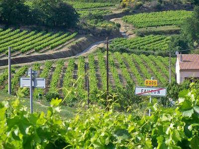 Faucon les vignobles route des vins d orange a vaison la romaine