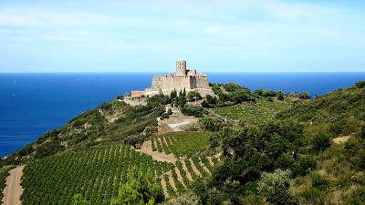 Fort saint elme route en terre catalane guide du tourisme des pyrenees orientales