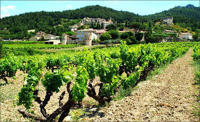 Gigondas route des vins les dentelles de montmirail guide du tourisme du vaucluse