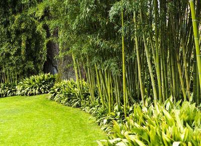 Jardin de planbuisson a le buisson de cadouin jardin remarquable en dordogne guide du tourisme en dordogne nouvelle aquitaine