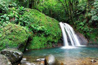La cascade aux ecrevisses route de la traversee guide du tourisme de la guadeloupe outre mer