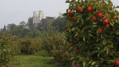 La route des fruits guide du tourisme de normandie