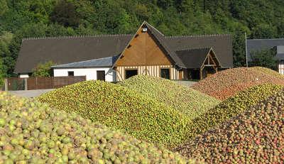 La route du cidre propose sur une quarantaine de kilometres un seduisant menu degustation de cidre aoc jus de pomme pommeau ou calvados