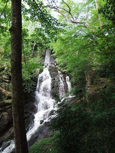 Lormes les gorges de narvau routes touristiques dans l yonne guide du tourisme en bourgogne