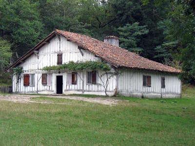 Marqueze maison du meunier a l ecomusee de la grande lande route touristique des landes guide du tourisme nouvelle aquitaine