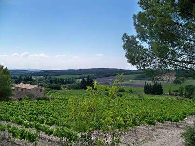 Mondragon vignoble du massif d uchaux route des vins d orange a vaison la romaine