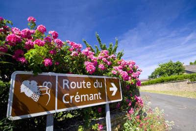 Panneaux sur la route cremant de bourgogne cote d or guide du tourisme en bourgogne
