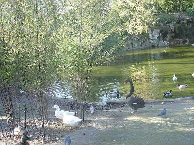 Parc bordelais jardin remarquable routes touristiques en gironde guide du tourisme nouvelle aquitaine