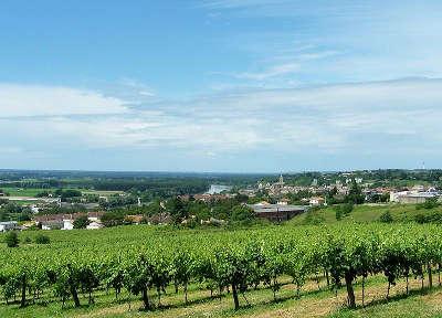 La route des bastides une route des vins de bordeaux - Office de tourisme de l entre deux mers ...