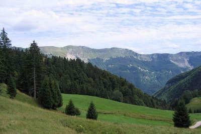 Plateau echallon route des sapins du haut bugey guide du tourisme de l ain