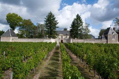Restigne route des vins de tourraine rive droite entre saumur et chenonceaux