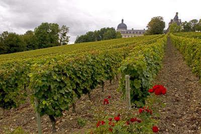 Route des vignobles de valencay guide du tourisme de l indre centre val de loire