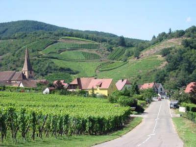 Route des vins d alsace a niedermorschwihr guide touristique de l alsace