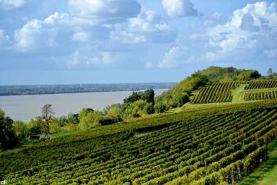 Rte des coteaux a bourg route des vins de bordeaux guide de tourisme de la gironde aquitaine