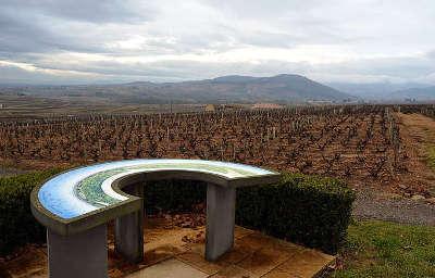 Saint amour bellevue route des vins du beaujolais rhone