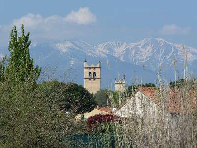 Saint genis des fontaines route des vins en albere guide du tourisme des pyrenees orientales