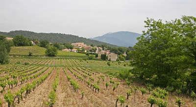 Saint marcellin les vaison route des vins d orange a vaison la romaine