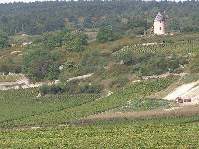 Santenay vignoble au pied du moulin sorine routes touristiques en saone et loire guide du tourisme en bourgogne