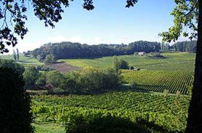 Saussignac la route des vins de bergerac guide du tourisme de la dordogne aquitaine