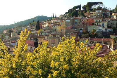 Sur la route du mimosa guide touristique provence alpes cote d azur