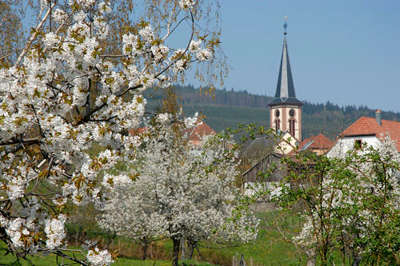 Thannenkirch route de la biere guide du tourisme alsace
