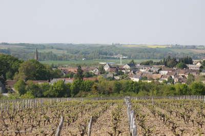Thore la rochette route des vins du val de loire la vallee du loir guide du tourisme de loir et cher