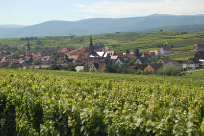 Traenheim route des vins d alsace guide du tourisme de l alsace