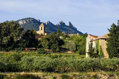 Vacqueyras route des vins les dentelles de montmirail guide du tourisme du vaucluse