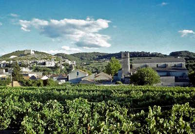 Circuit de la route des vins de la dr me proven ale - Office du tourisme de vaison la romaine ...