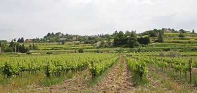 Villedieu route des vins de la la drome provencale guide du tourisme de la drome