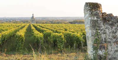 Vouvray route des vins de tourraine rive gauche entre saumur et chenonceaux