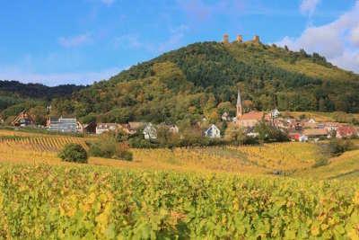 Wintzenheim ruines des 3 chateaux route des 5 chateaux guide touristique du haut rhin alsace