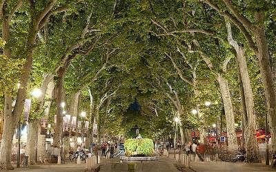 Aix en provence ville d art et d histoire court mirabeau routes touristiques des bouches du rhone guide du tourisme de paca