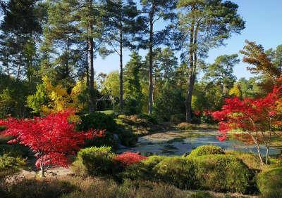 Arboretum des grandes bruyeres jardin remarquable routes touristiques dans le loiret guide du tourisme centre v