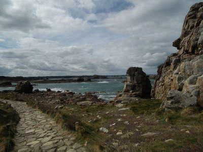 Cote des ajoncs les routes touristiques dans les cotes d armor guide du tourisme en bretagne